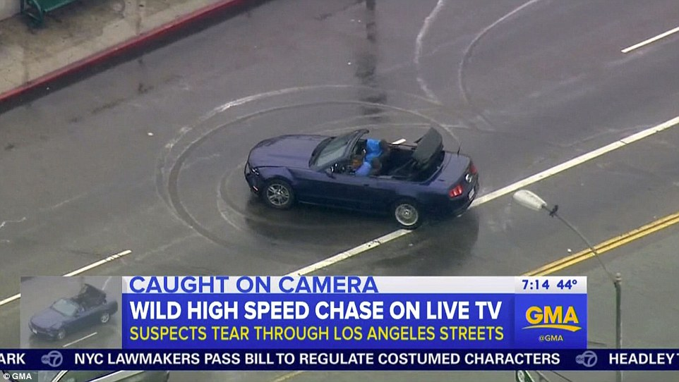 WTF! My Local News Was Hijacked by a Stupid Car Chase